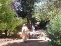 provence2008